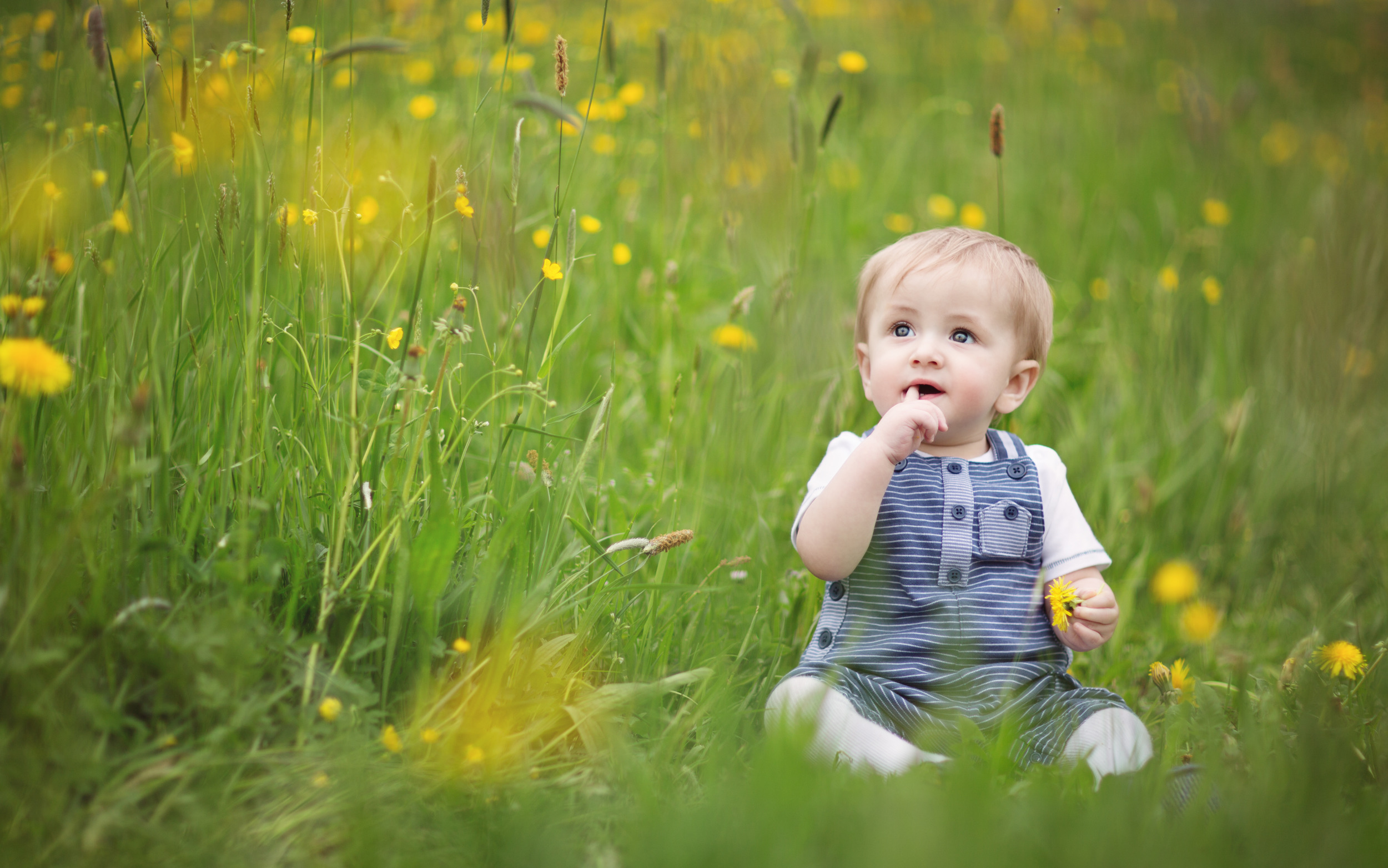 Image result for baby in spring