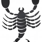 scorpio-horoscope-2014-150x150